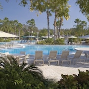 Saddlebrook Golf Resort and Spa