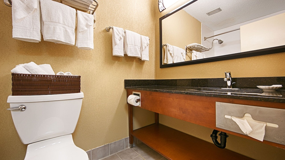Bathroom, Best Western Plus Wooster Hotel & Conference Center