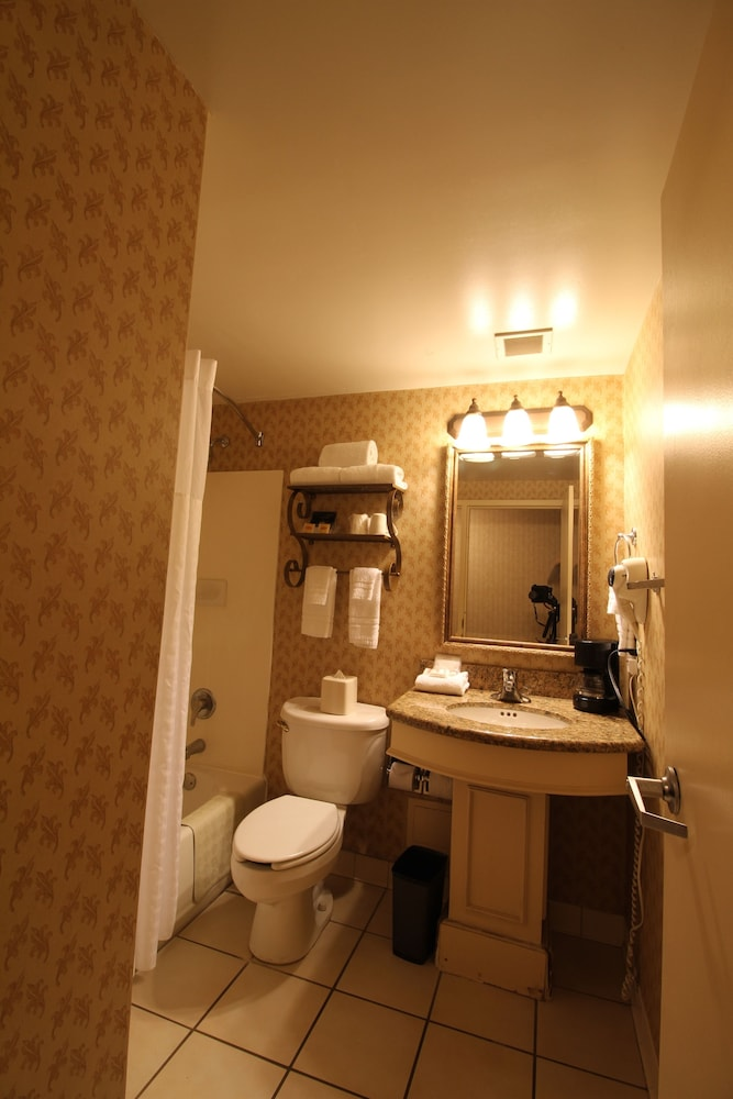 Bathroom, Gateway Hotel