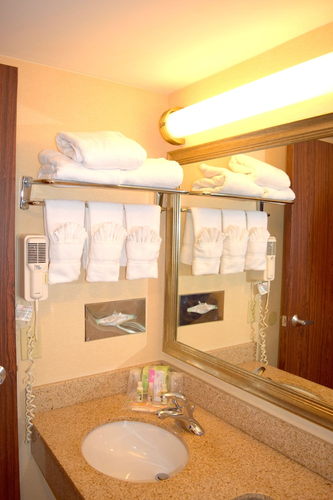 Holiday Inn St Louis Airport In St Louis Hotel Rates Reviews On Orbitz