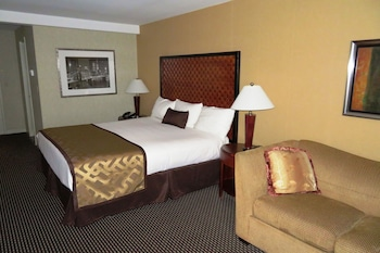 Executive Room, 1 King Bed with Sofa bed - Guestroom