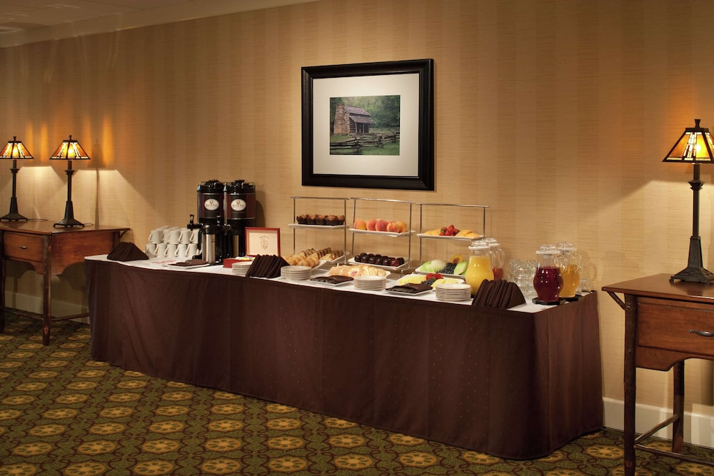 Meeting Facility, The Park Vista - a DoubleTree by Hilton Hotel - Gatlinburg