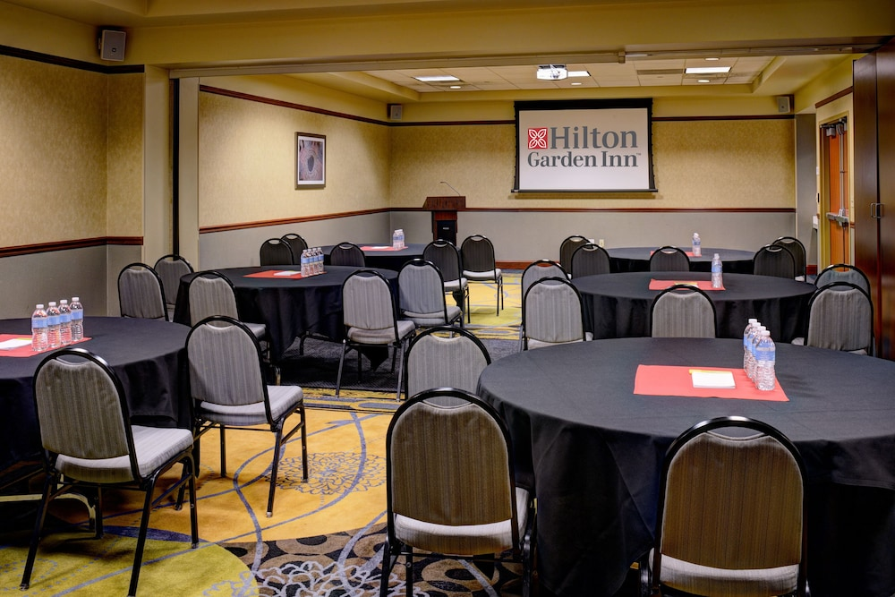 Meeting Facility, Hilton Garden Inn Detroit Downtown