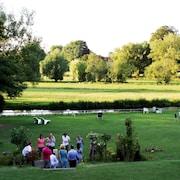 Área de parrillas o pícnic