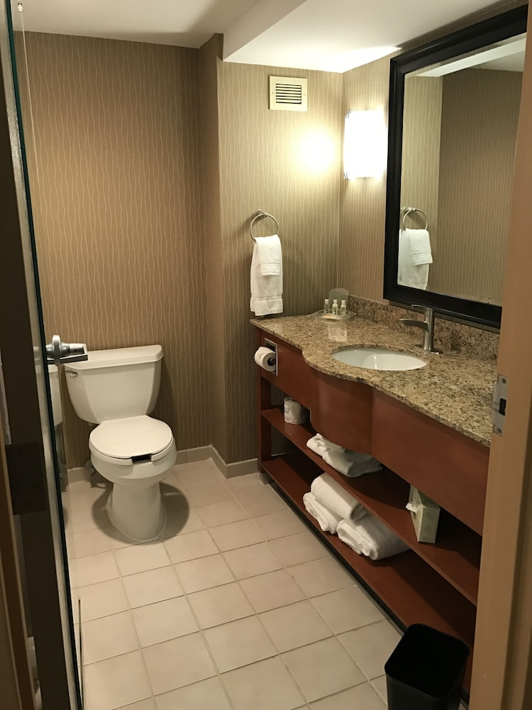 Bathroom, Holiday Inn Hotel & Suites Bolingbrook