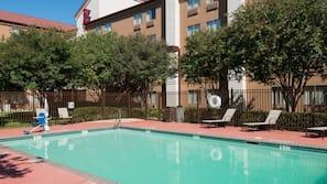 Outdoor pool, sun loungers
