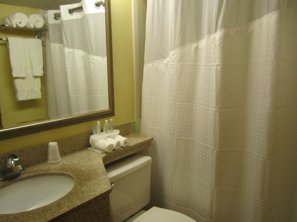 Bathroom, Holiday Inn Express Boston