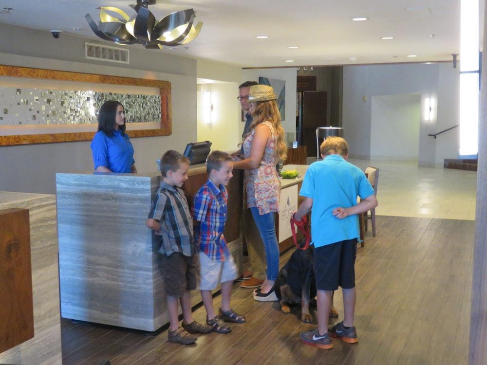 d3993baeb0 Hilton Sedona Resort at Bell Rock  2019 Pictures
