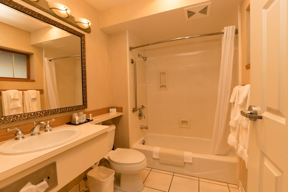 Bathroom, Lakeside Lodge And Suites