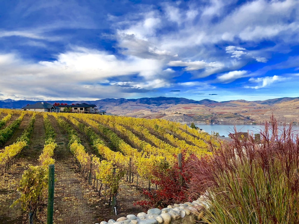 Vineyard, Lakeside Lodge And Suites