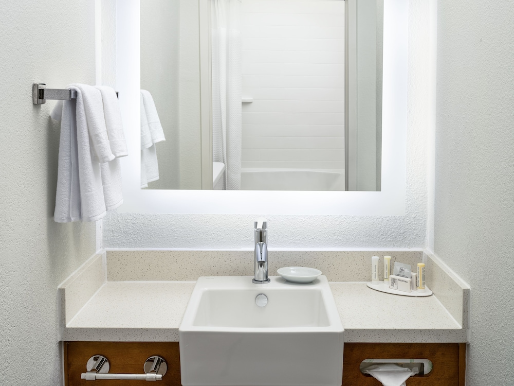 Bathroom, SpringHill Suites Dallas Arlington North