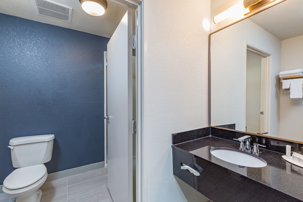 Room, Fairfield Inn & Suites by Marriott Tampa North