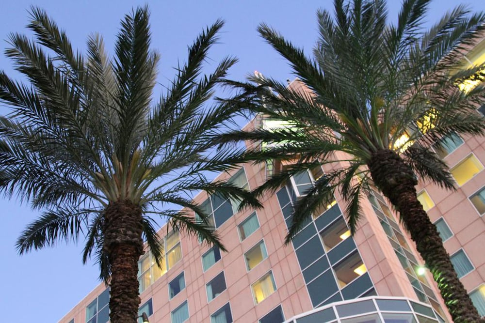 Moody Gardens Hotel Spa And Convention Center Reviews Photos Rates