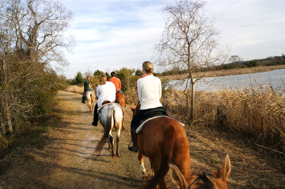 Horse Riding, The Inn At Middleton Place