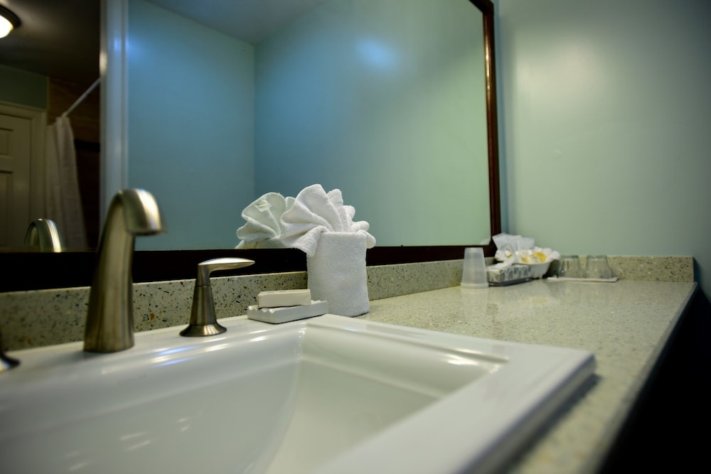 Bathroom Sink, Green Turtle Club Resort & Marina