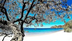 On the beach, sun-loungers, beach towels, scuba diving