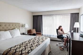 Premium Suite, 1 King Bed - Guestroom