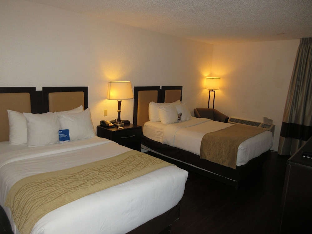 Room, Comfort Inn Oceanside Deerfield Beach