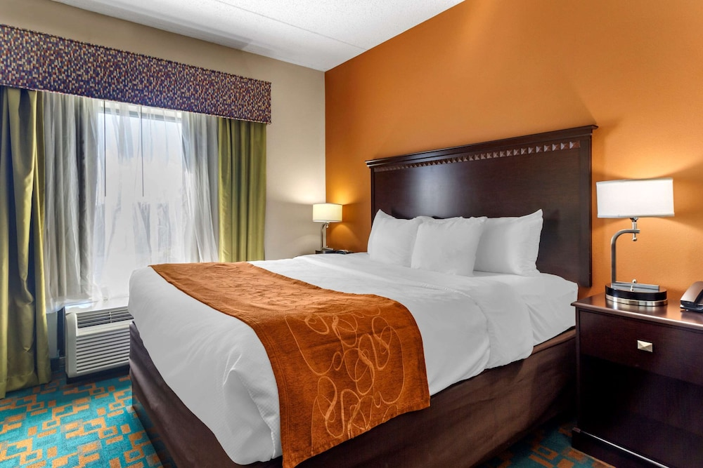 Room, Comfort Suites Knoxville West - Farragut