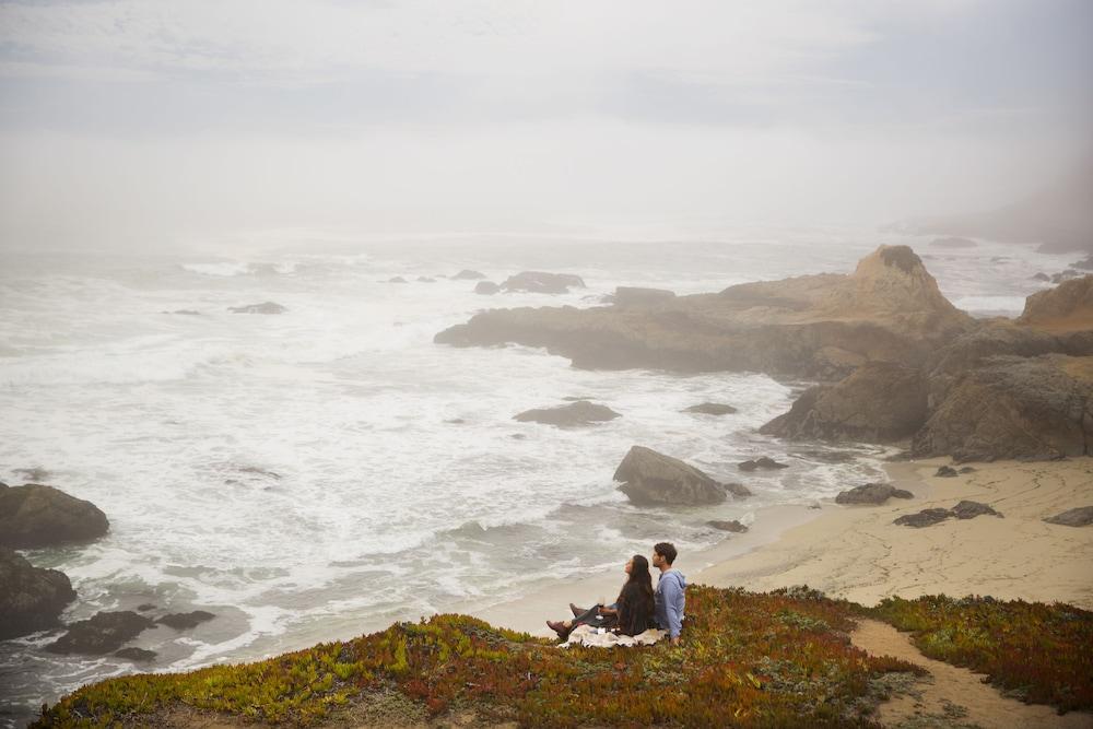 Bodega Bay Dog Friendly Hotels
