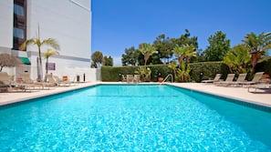 Una piscina al aire libre (de 7:00 a 21:00), sombrillas, tumbonas