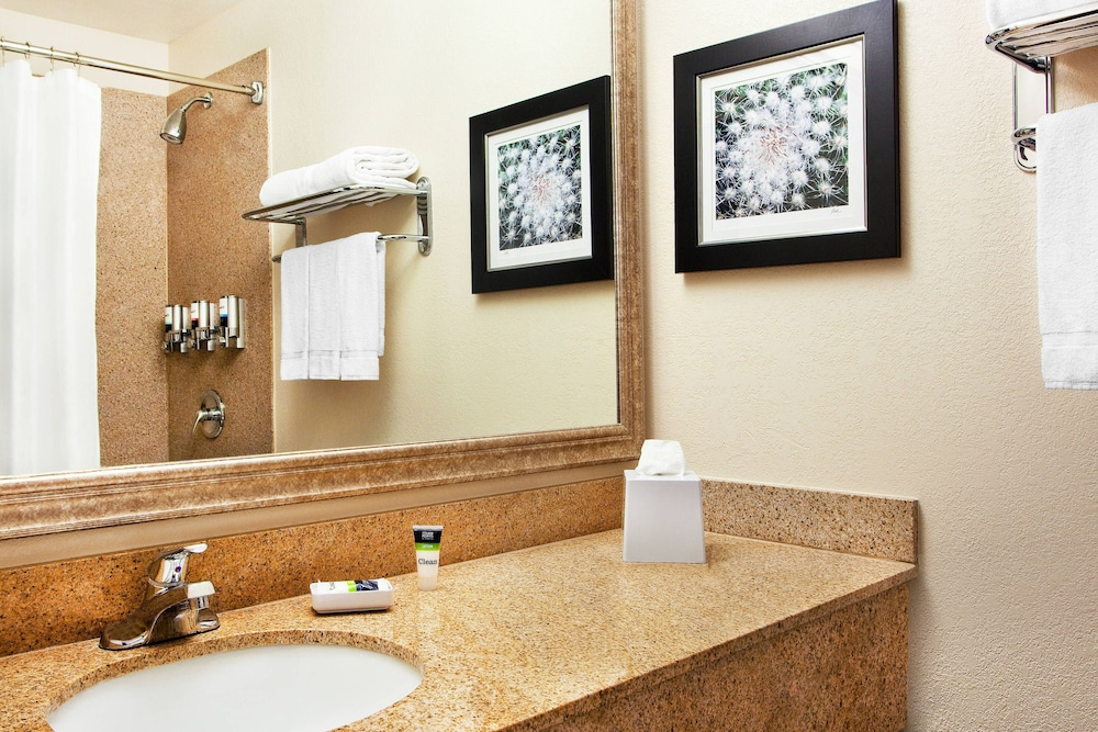 Bathroom, Four Points by Sheraton Tucson Airport