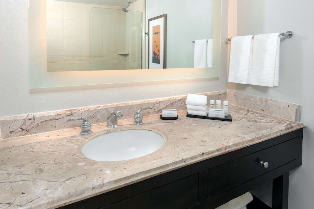 Bathroom, Embassy Suites by Hilton - Dallas Park Central Area