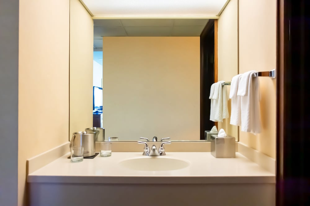 Bathroom, DoubleTree by Hilton San Jose