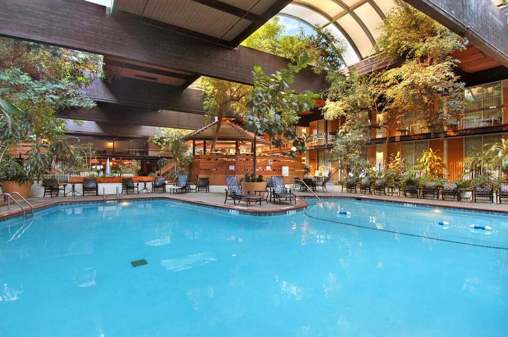 Indoor Pool, Millennium Buffalo