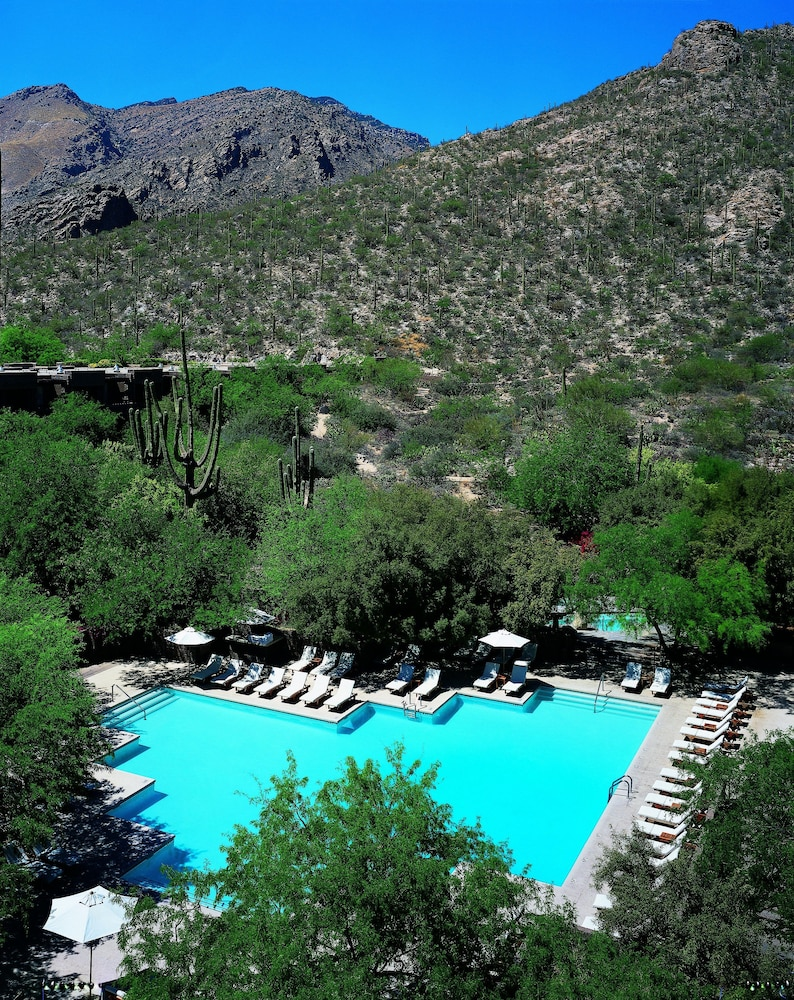 Outdoor Pool, Loews Ventana Canyon Resort