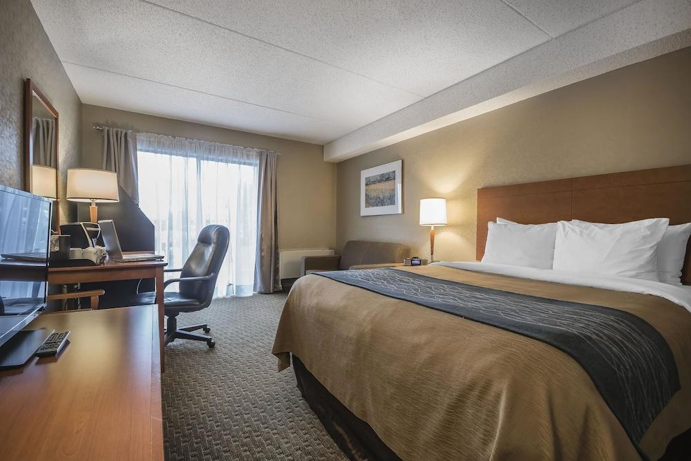 Comfort Inn Chilliwack Can Expedia Com Au