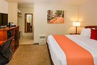 Standard Room, 1 King Bed, Non Smoking, Refrigerator & Microwave (Pet Friendly)