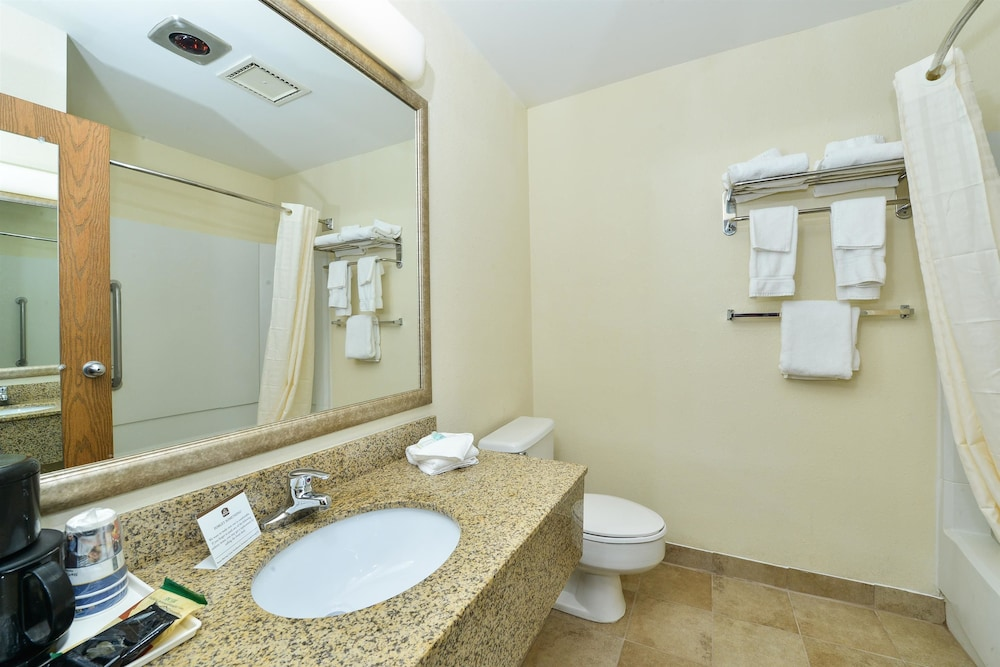 Bathroom, Best Western Wytheville Inn