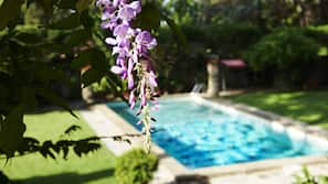 Seasonal outdoor pool, open 7:00 AM to 7:00 PM, pool loungers