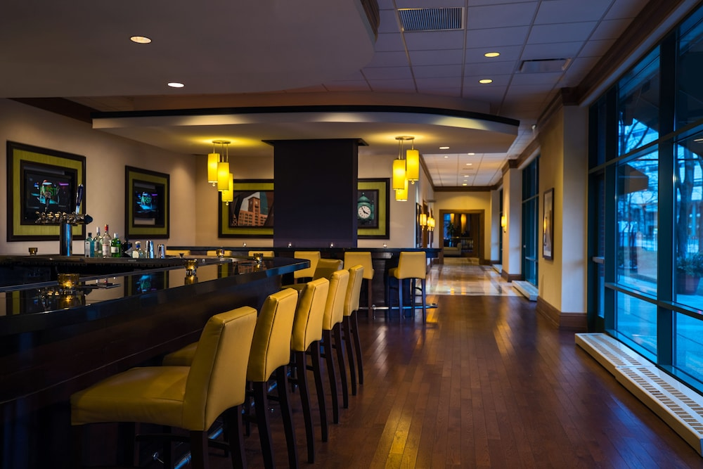 Bar, Chicago Marriott at Medical District/UIC