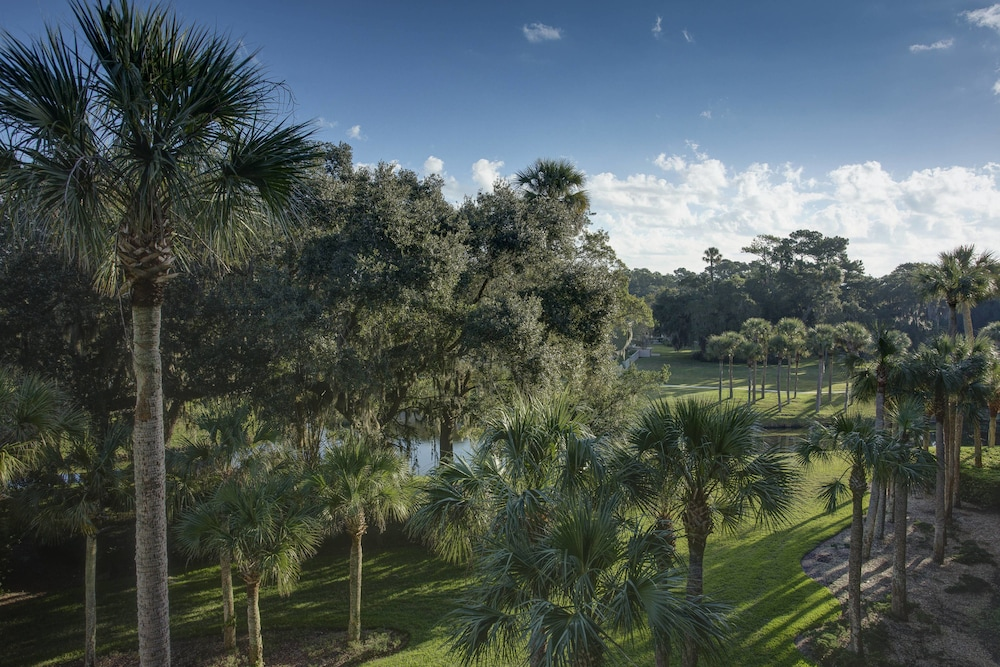 View from Room, Sawgrass Marriott Golf Resort & Spa