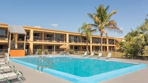 Outdoor pool, open 7 AM to 8 PM, pool umbrellas, sun loungers