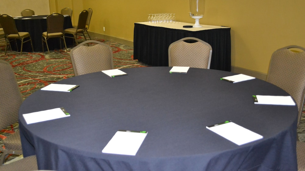 Meeting Facility, Holiday Inn Houston S - Nrg Area - Medical Center