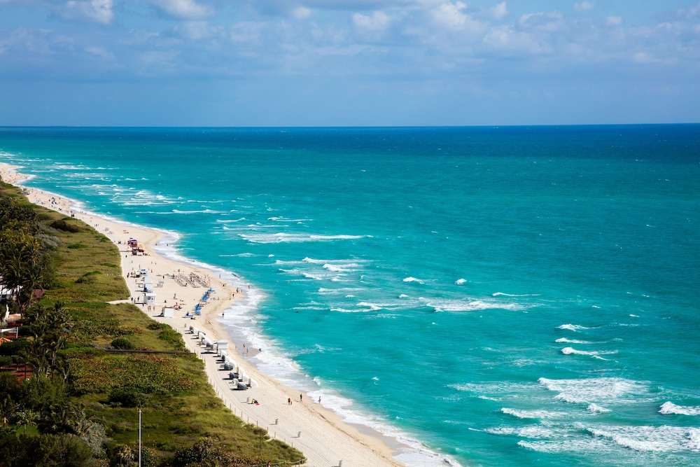 View from Property, Eden Roc Miami Beach