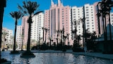 Hilton Grand Vacations at The Flamingo - Las Vegas Hotels