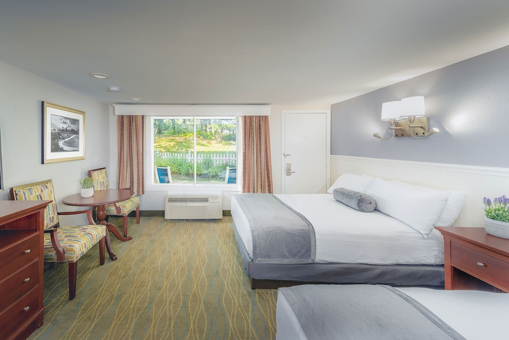 Room, Red Jacket Mountain View and Indoor Water Park