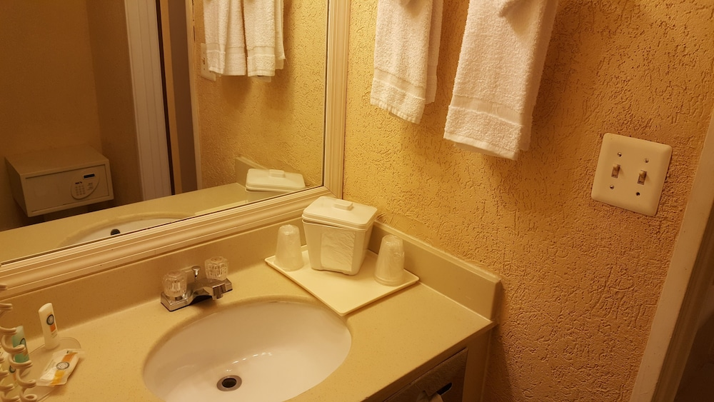 Bathroom Sink, Econo Lodge Busch Gardens