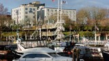 Best Western Dorchester Hotel - Nanaimo Hotels