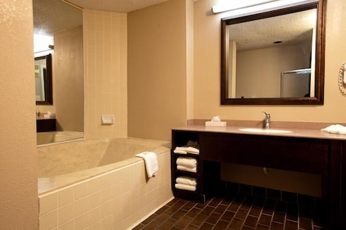 Bathroom, Atrium Hotel and Conference Center