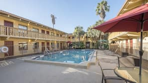Outdoor pool, open 9:00 AM to 4:00 PM, pool umbrellas, pool loungers
