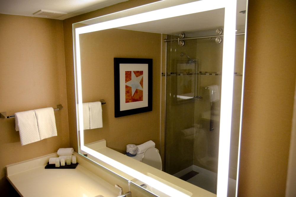 Bathroom, Embassy Suites by Hilton Austin Downtown South Congress