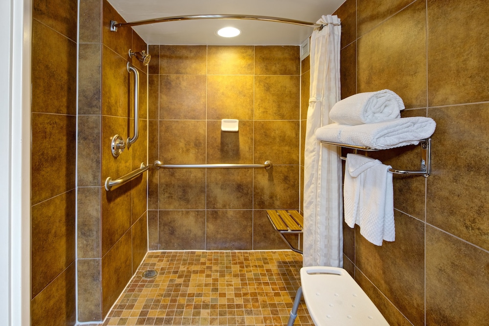 Bathroom, DoubleTree by Hilton Dallas - Richardson