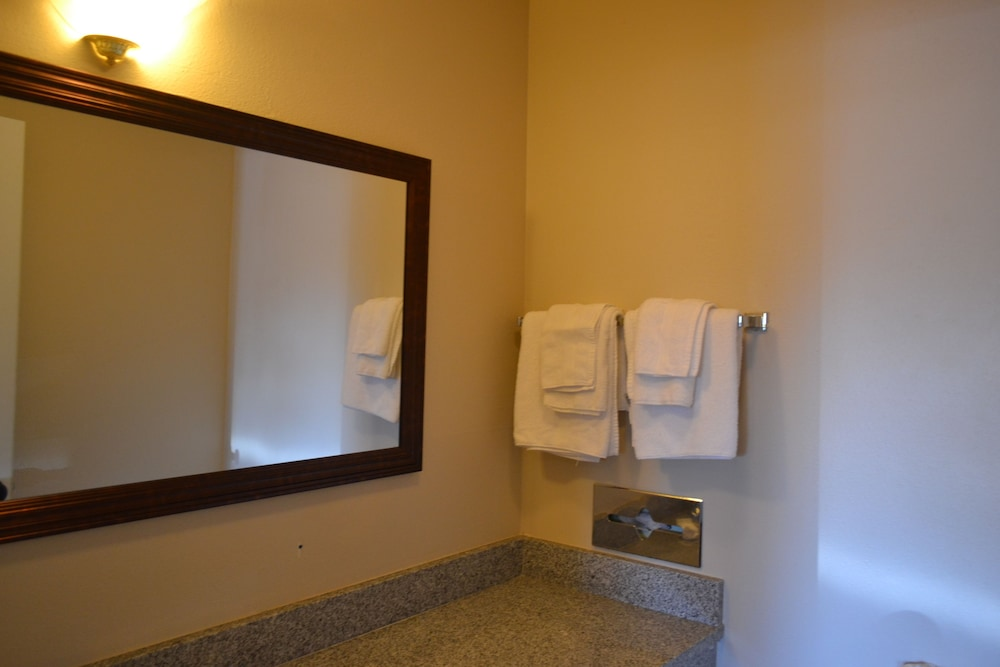 Bathroom, Skyway Inn SeaTac