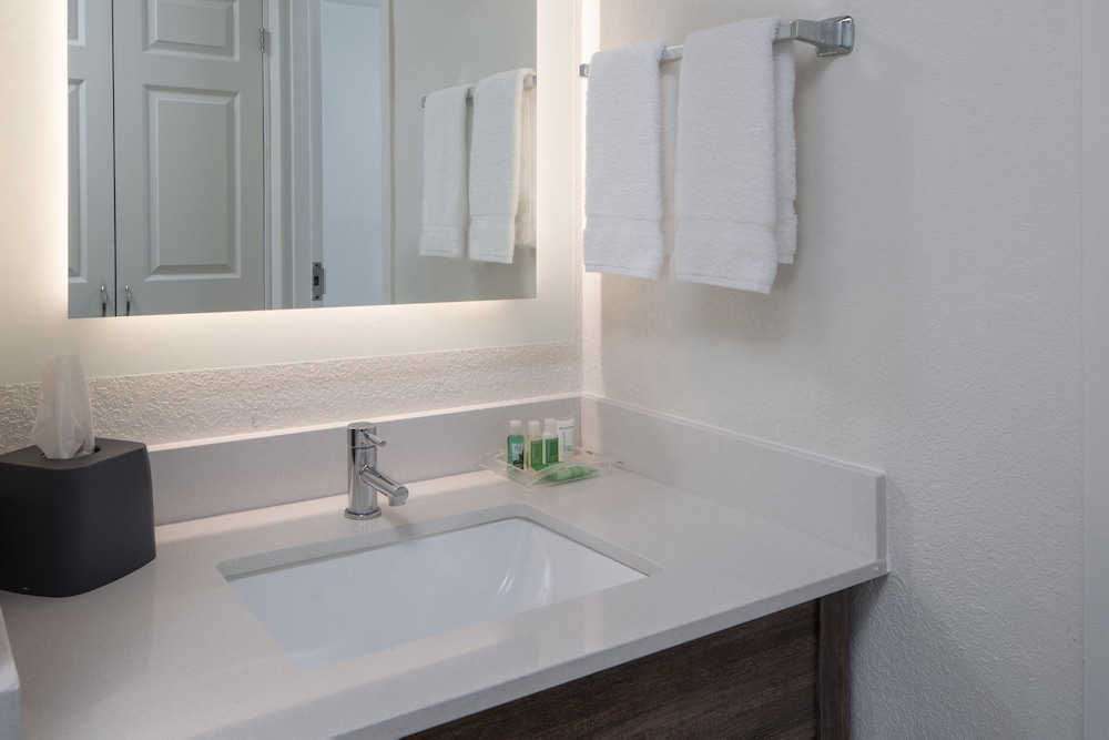 Bathroom, Holiday Inn Tampa Westshore - Airport Area