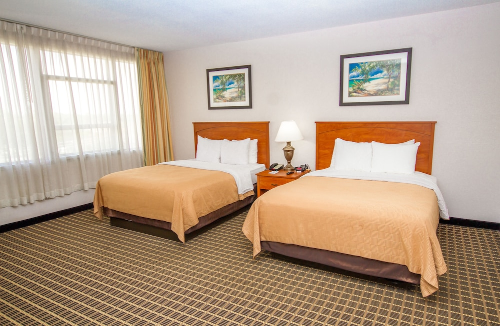 Room, Clarion Inn & Suites Miami International Airport
